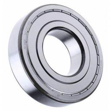 SKF Low Noise Deep Groove Ball Bearing 6313/6313-Z/6313-2z/6313-RS/6313-2RS for Agricultural Machinery
